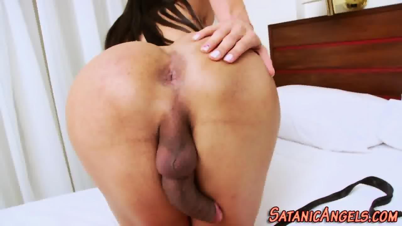 Shemale hd video