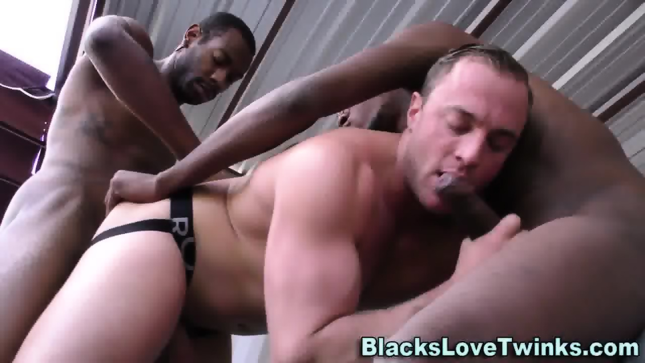 Gays ass nailed with bbcs