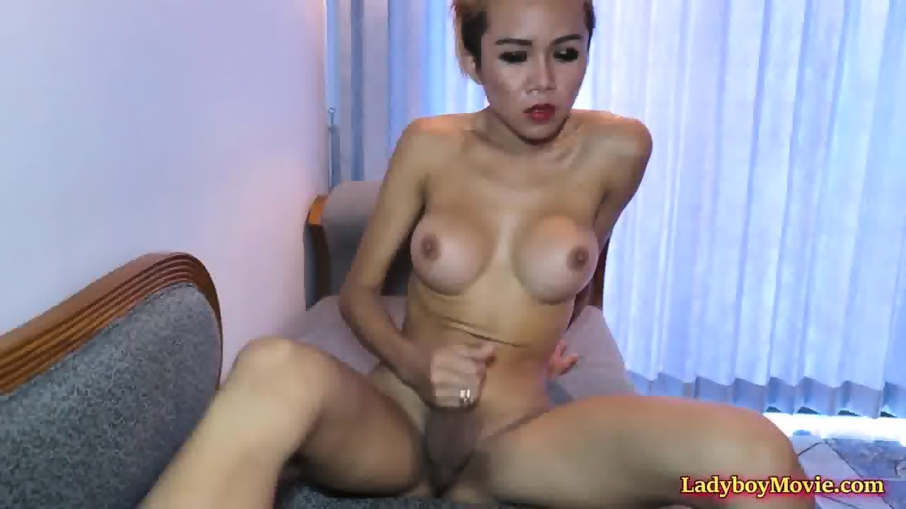 2 Horny Shemales Blow and Fuck Each Other