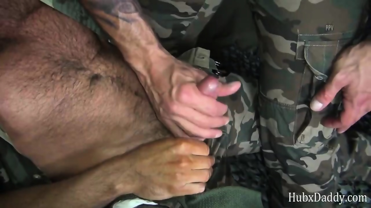 Two bears fucking in the military camp