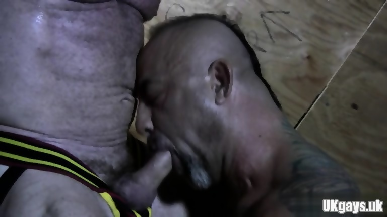 Big Dick Bear Oral Sex And Cumshot