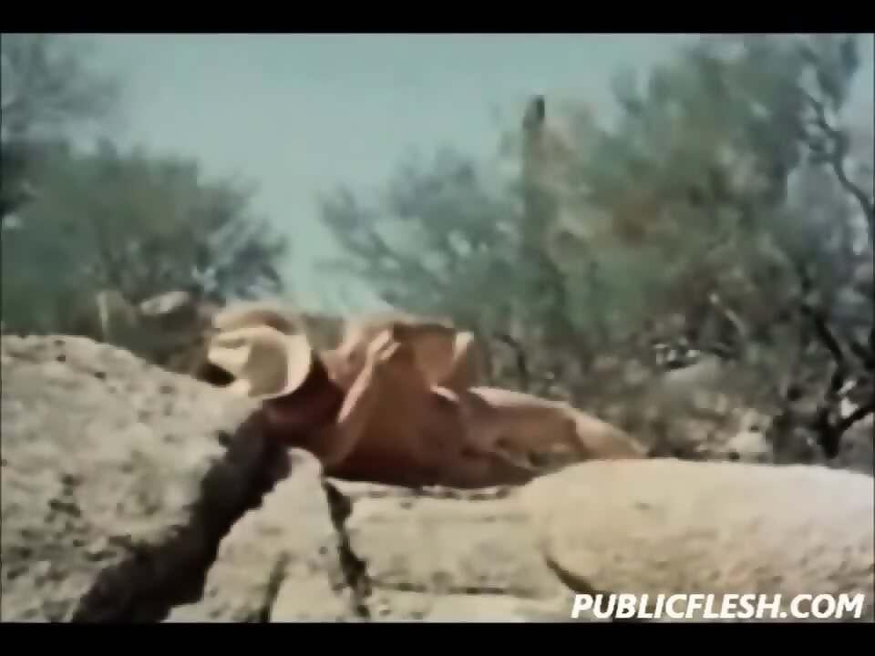 Love women Brokeback mountain fuck scene nice ass