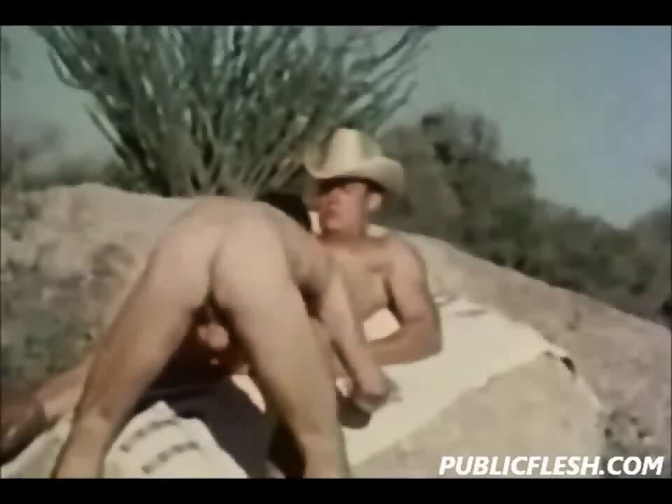 brokeback mountain gay sex