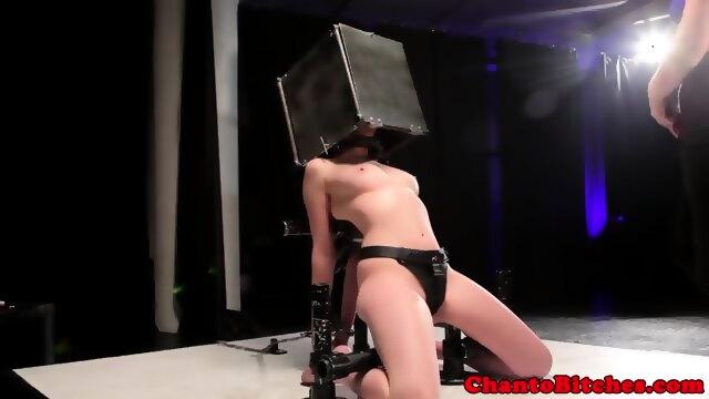 Teacher caught fucking student free porn