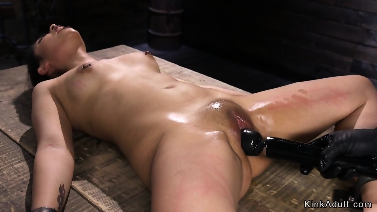 Bound and shaved