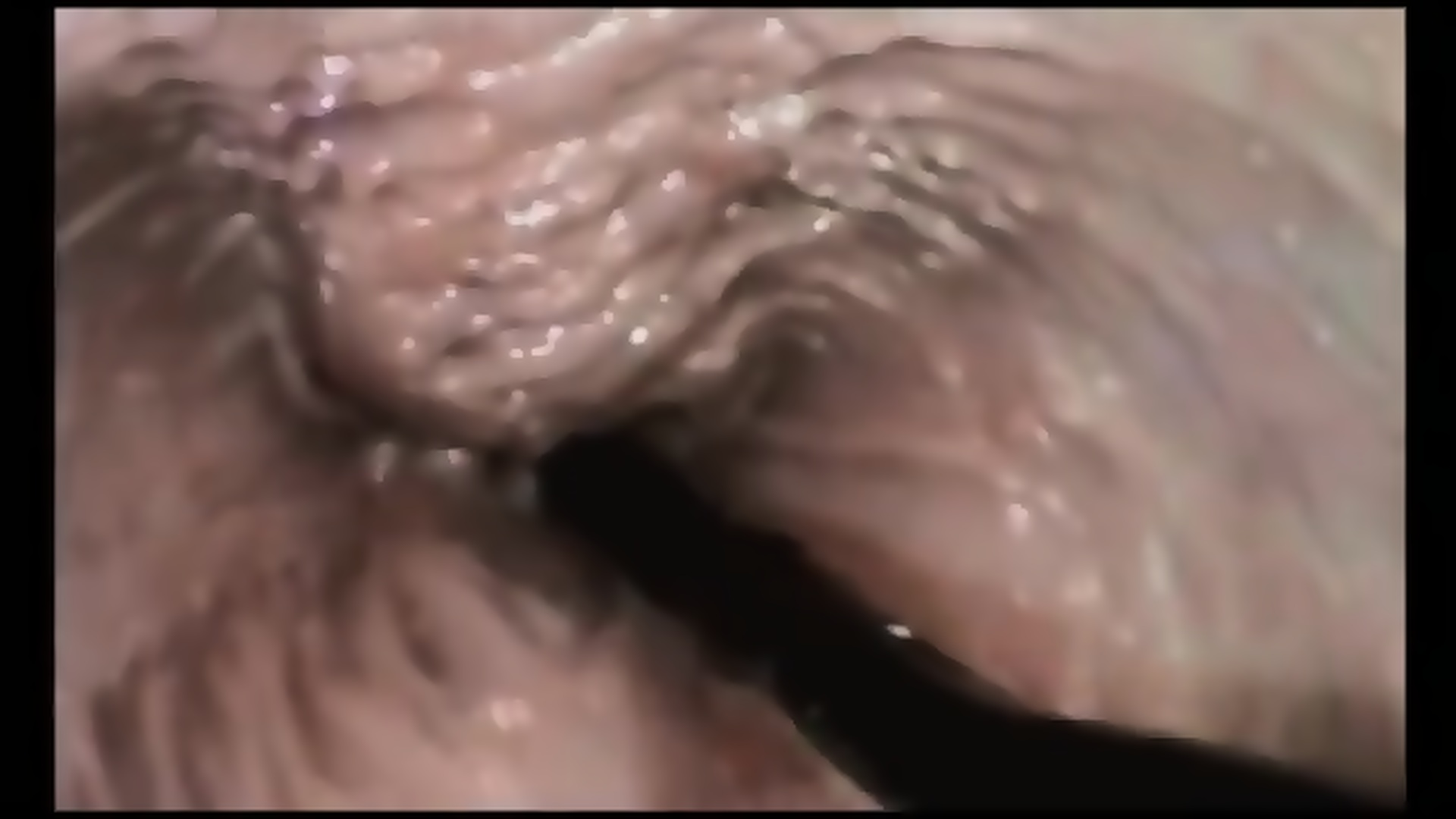 Dad Cums Daughters Pussy