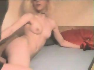 Pornstar galleries free anal
