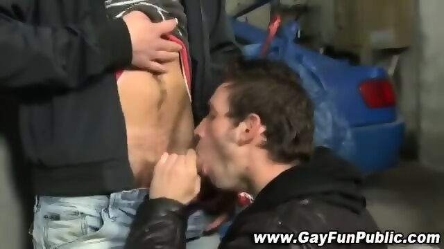 Amateur hunk sucked off