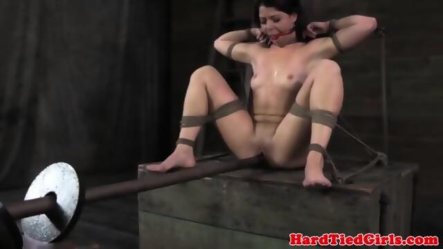 Bondage on a stick