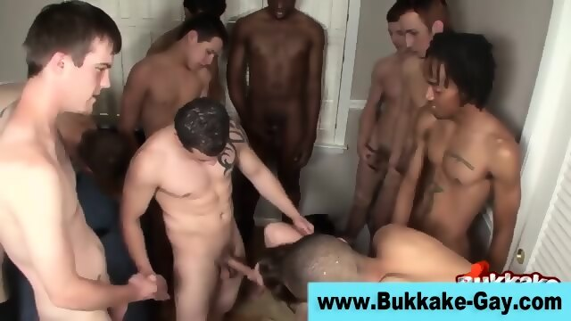 Group Gay Cock Suck Bukkake