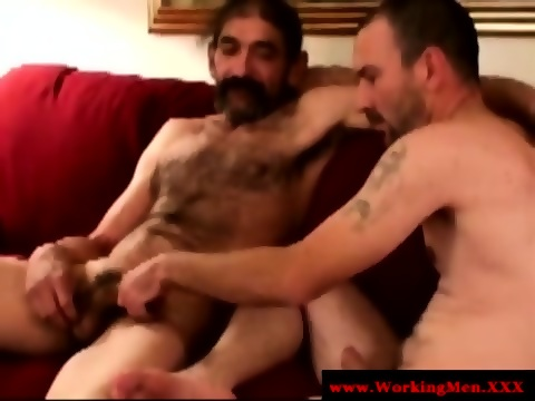 hard Hot gays suck