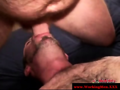 Bearded Bear Sucks Cock In Sixty Nine