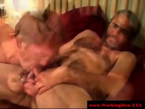 Cock Tugging Virile Bear