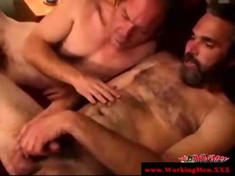 Mormon Bear Sucks And Tug