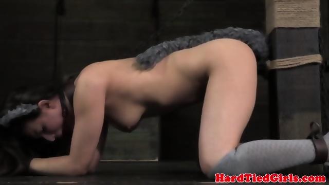 Kinky kitty role play with kinky maledom