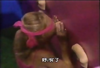 american sex gladiators videos