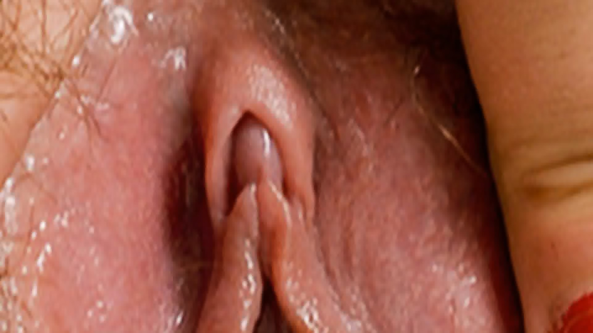 Hd Close Up Pussy 11