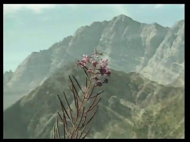 Heidi teil 5 die lustigen spritzbuben der berge 2